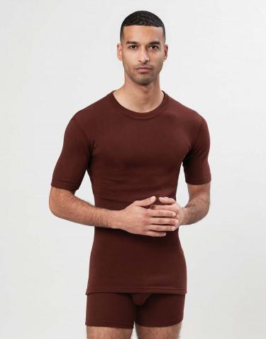 T-shirt i merinoull för herr